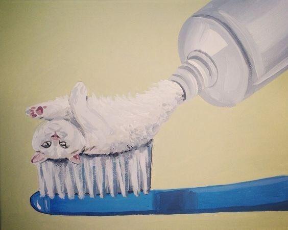 Daniel Ryanさんと言う画家の描く猫の絵が面白い。白猫の出て来る歯磨き粉、有ったら欲しい(笑)
