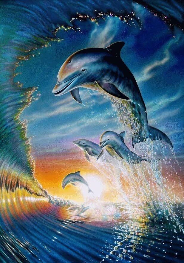 Картинки дельфинов анимация