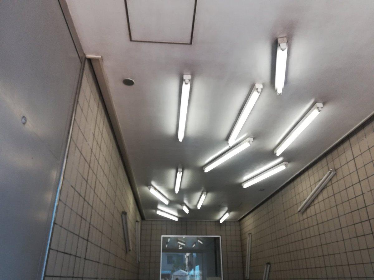 それにしてもなんで清澄白河駅はこんなに不安になる蛍光灯の配置なの…?
