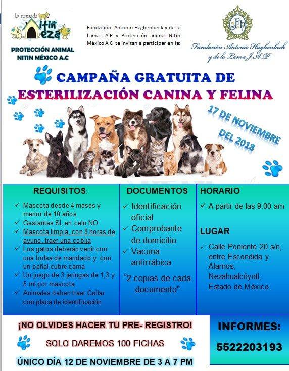 La Camada Nitin Neza on Twitter: