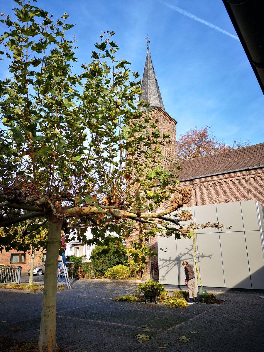 Kirchengrün bei #ekduelken. Wer Zeit hat, und (k)einen grünen Daumen, kann gerne noch kommen