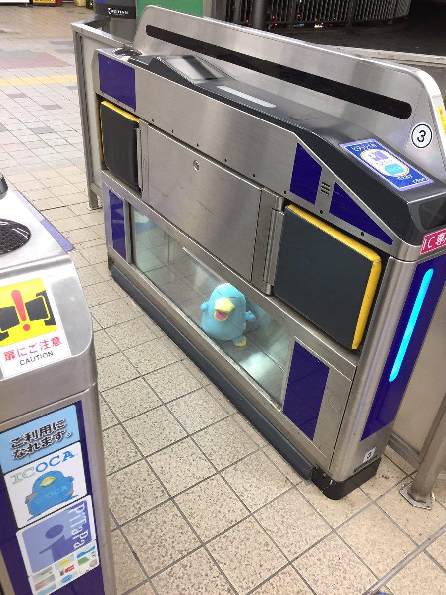 あと京都の電車、改札に青い河童?が永久に閉じ込められててめっちゃ良い!感動した…東京もペンギン閉じ込めてほしい