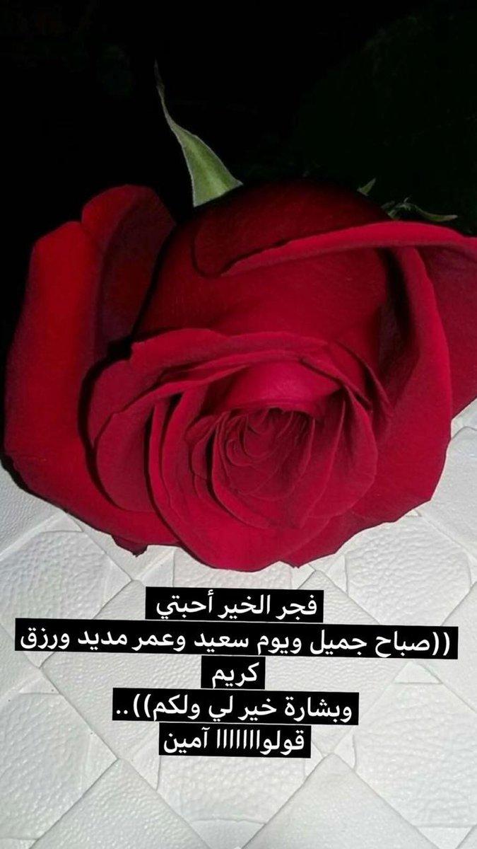 Sukar012 On Twitter صباحك ورد 6