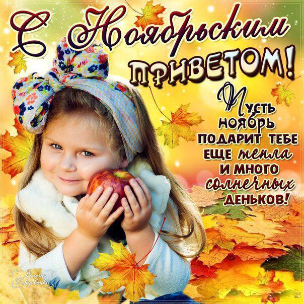 Открытки ноябрьский приветик доброго дня вам, белая роза плачет