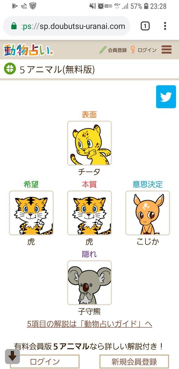 動物占い 5キャラ