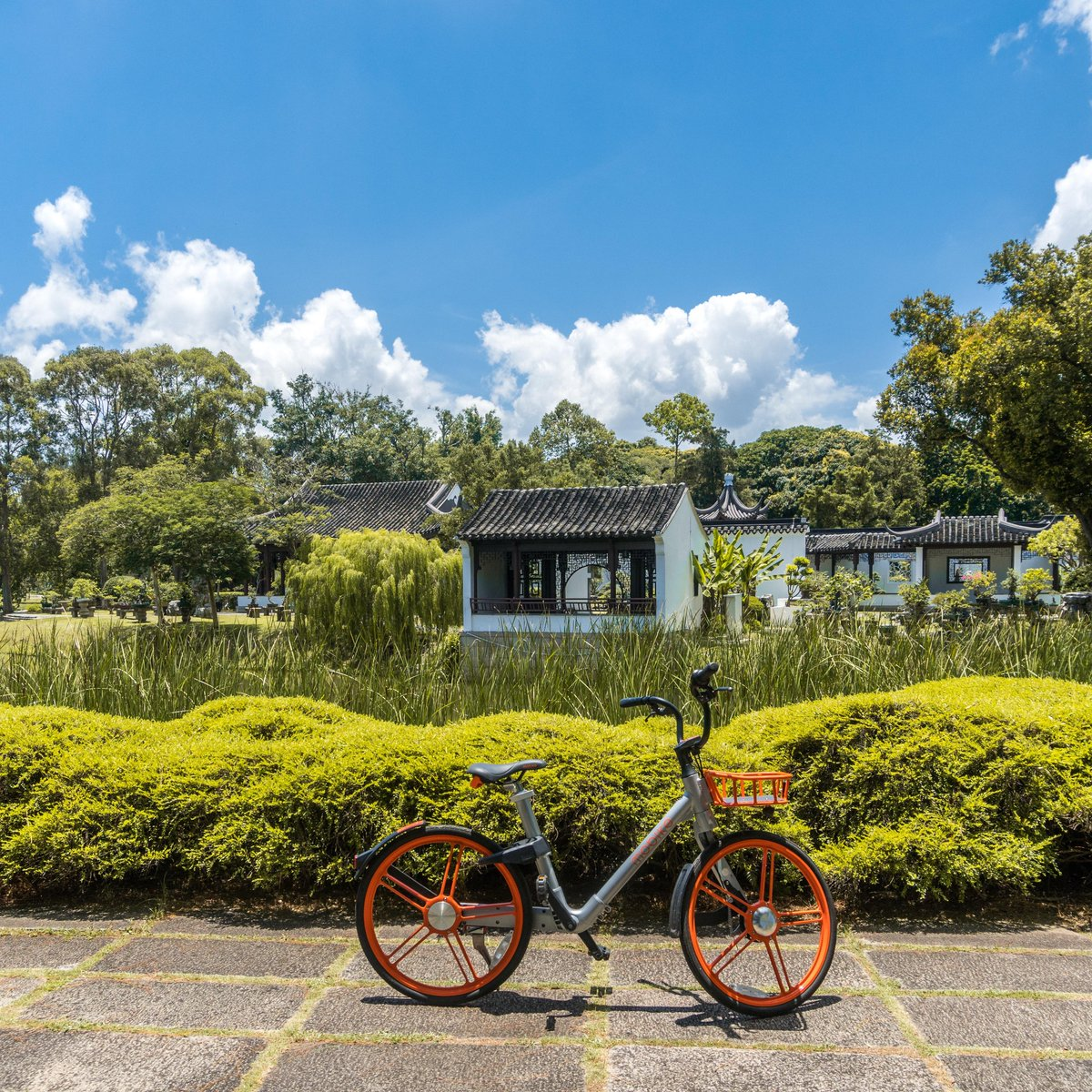 Opened in 1975, the Singapore Chinese and Japanese garden offers many architectures and sculptures! 🌿 This Chinese Garden in the West is a tranquil and peaceful place one should definitely not miss! 🚲  #Mobike there today! https://t.co/iVcSW76nmp