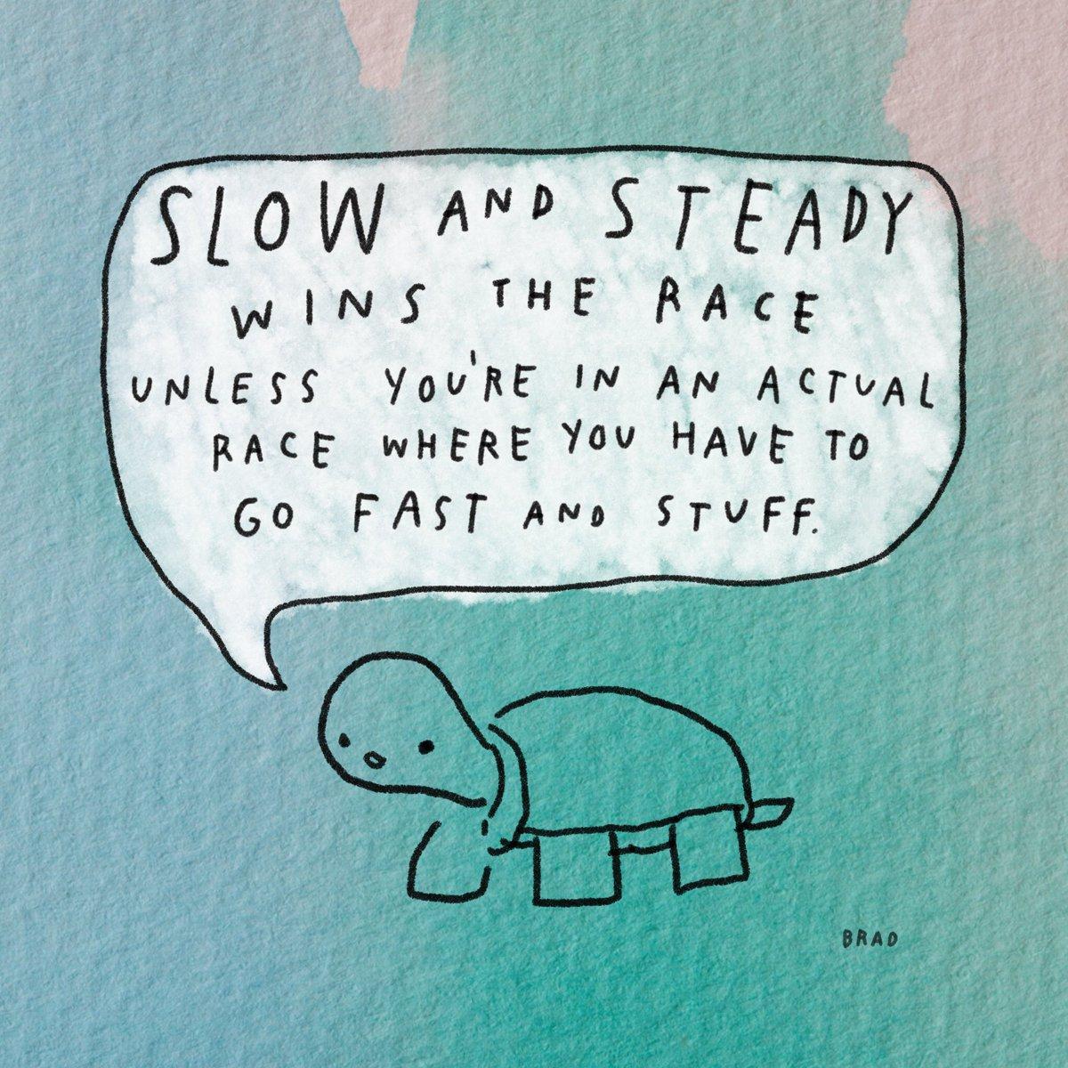 Motivational Turtle is not very good at pep talks. instagram.com/p/BpzFiFDAuxM/