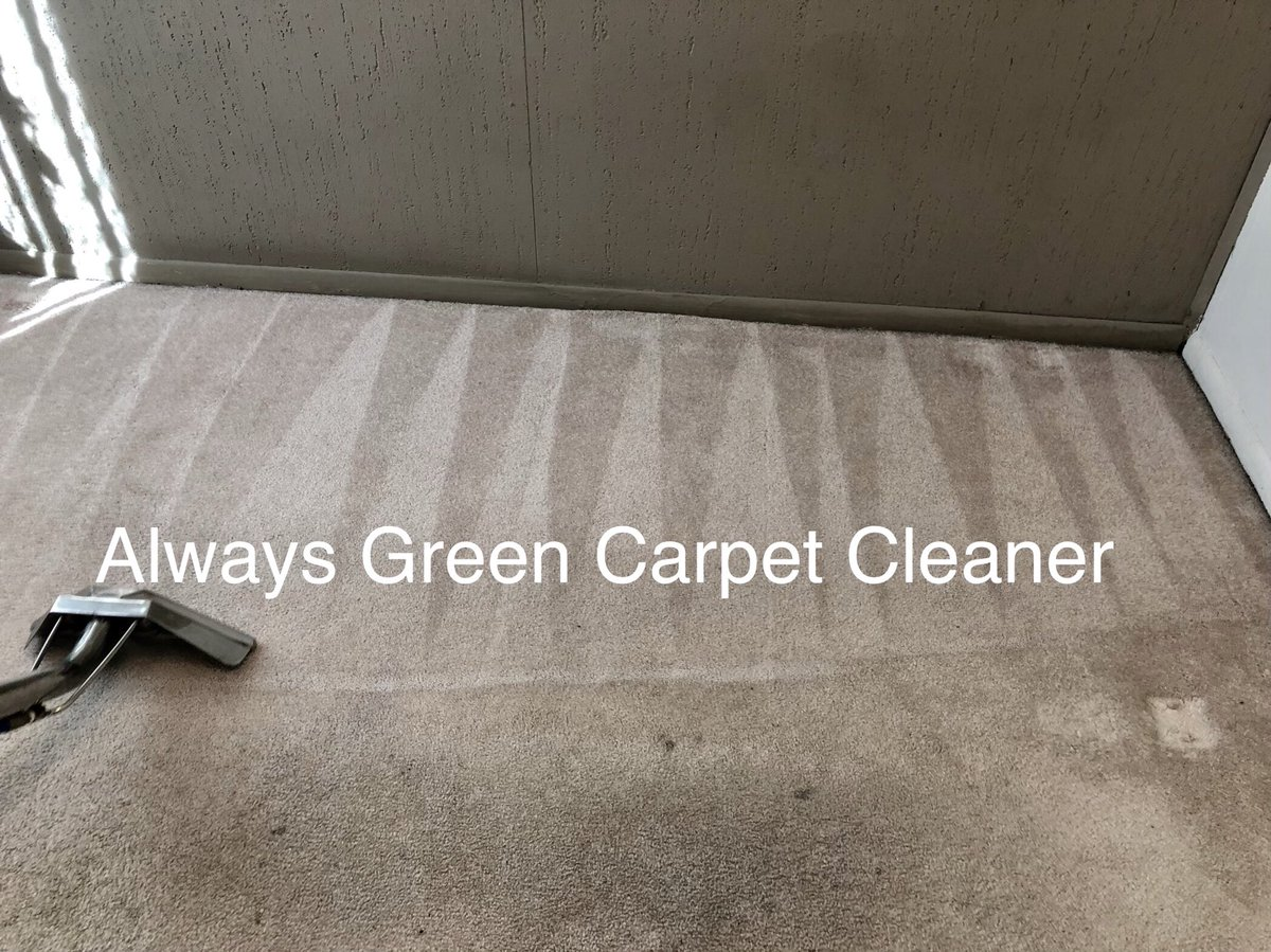 Always Green Carpet Cleaner Nyc Cleaning Twitter