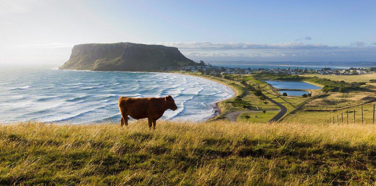 Lgbt Rights In Tasmania