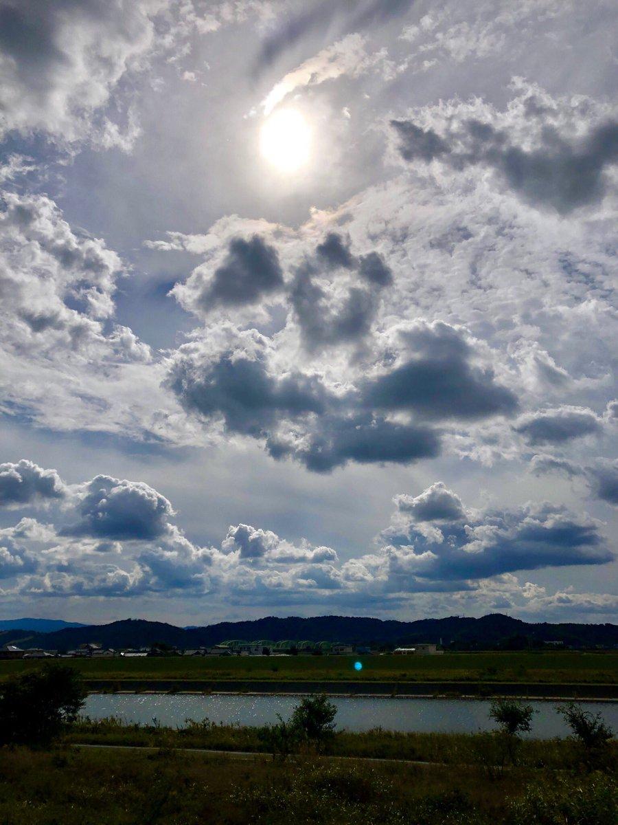 清原ジョニー V Twitter 今日の和歌山市紀の川のお昼過ぎをパチリ