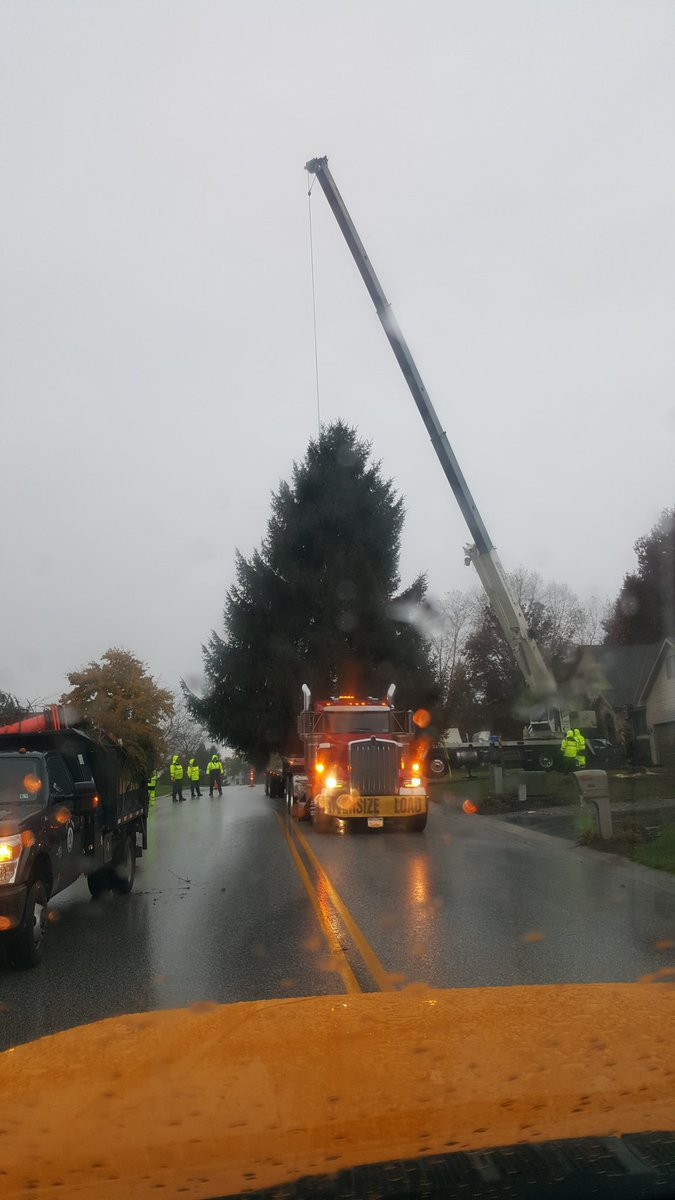 John Bean On Twitter Installing The Christmas Tree On The Square