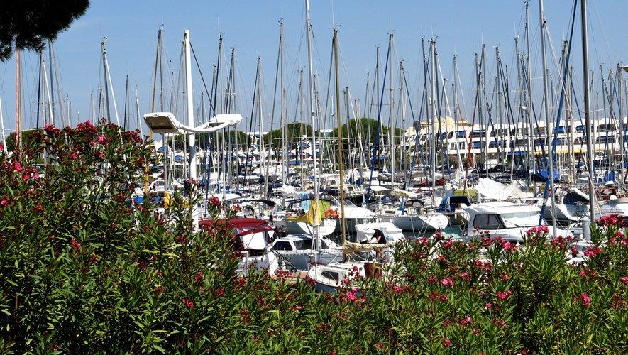 Port Camargue   Info en direct, news et actualité en temps réel ... 987cebbfe5c