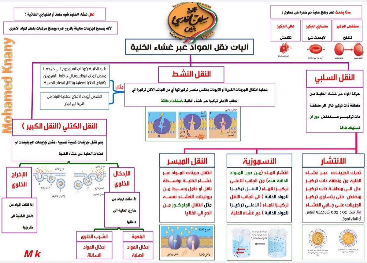 92147f5e5 #احياء10ك1 hashtag on Twitter