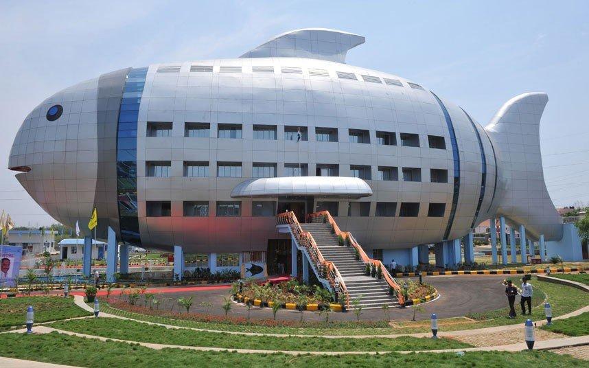 インドの水産庁可愛すぎ。