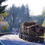 Will the new #USMCA trade deal yield positive developments for U.S.- Canada lumber trade dispute? https://t.co/ovHwNzb4rS #nahbglobal #homebuilding