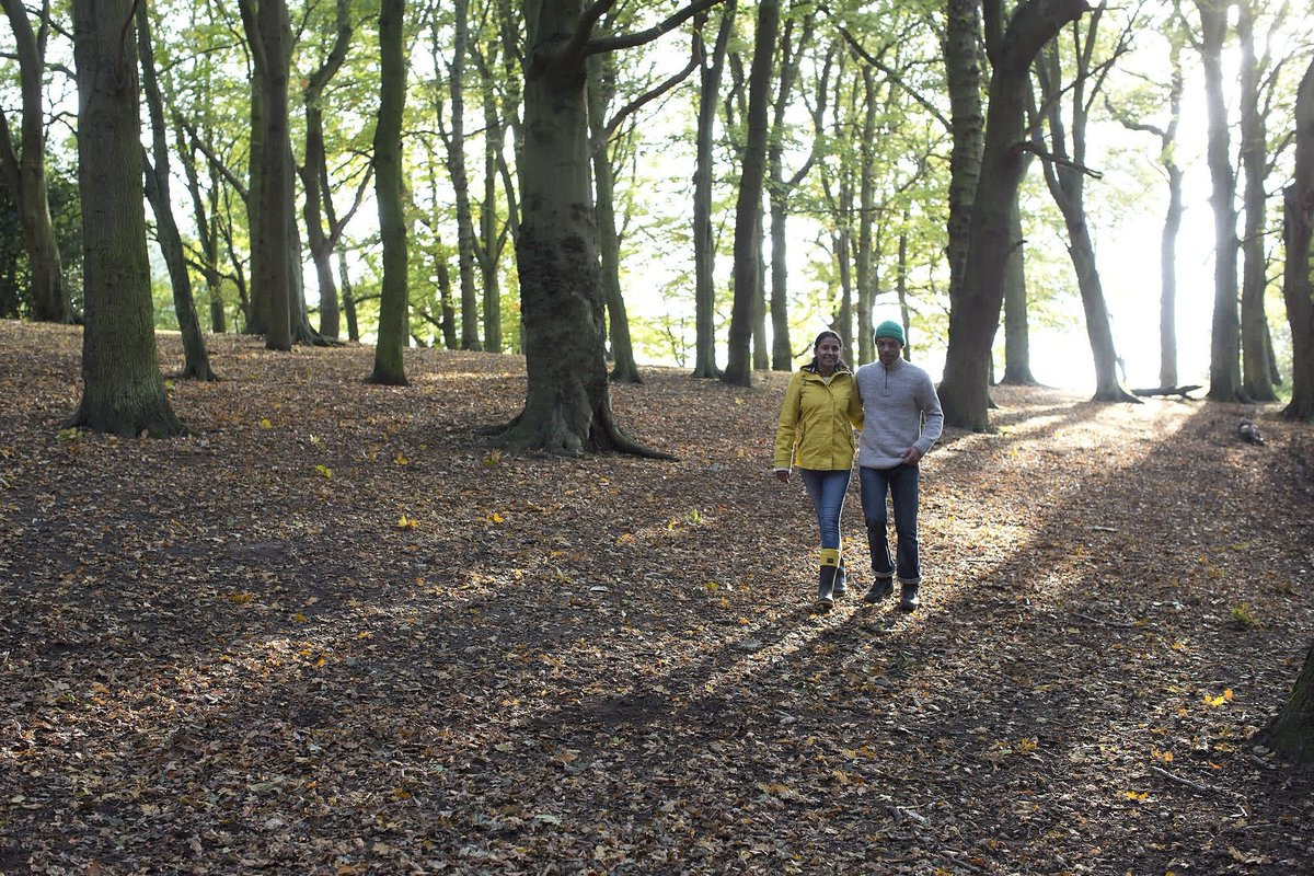 Can Spending Time In Nature Improve >> Woodland Trust On Twitter Spending Time With Trees And Woods Can