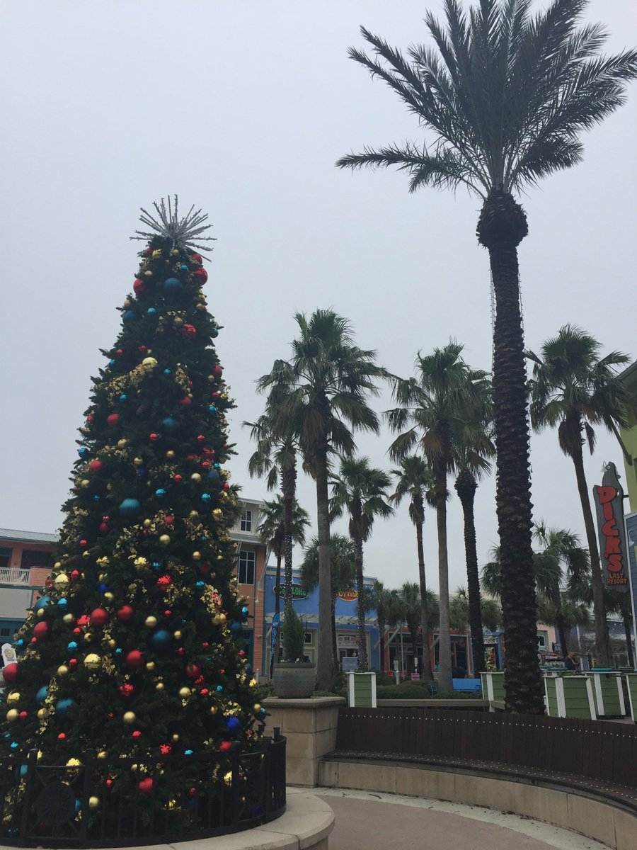 &#39;Tis the season for Christmas and palm trees to cohabitate!   #PanamaCityBeach #Christmas<br>http://pic.twitter.com/xh7LZN7hdQ