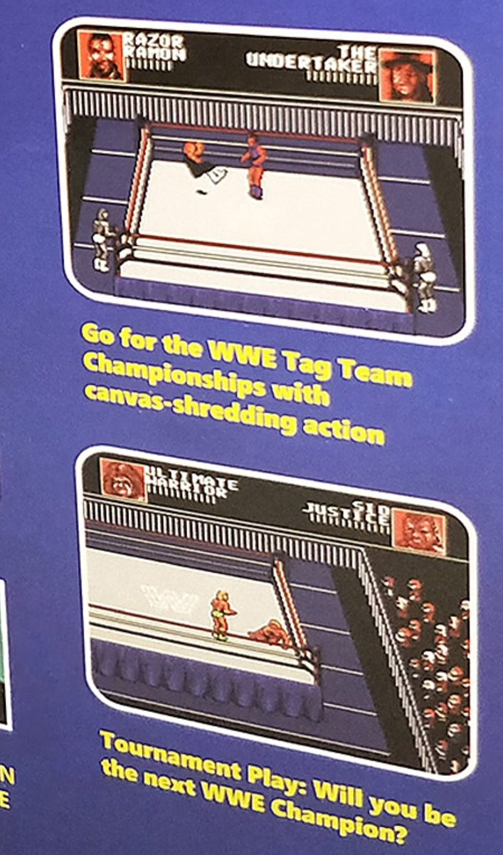 Frank Cifaldi On Twitter Msi Which Spun Off Of Majesco One Of The First Companies To Do Legal Nes On A Chip In The U S Is Making New Units The Wwe Steel Cage