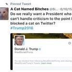 #OtherTrumpPhobias Twitter Photo