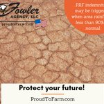 Image for the Tweet beginning: Protect your Future! PRF indemnities