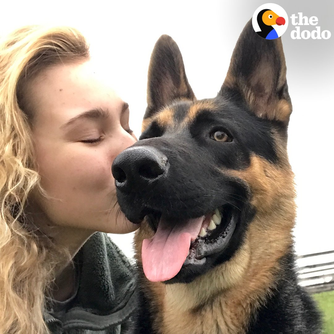 This dog knows how to save his mom's life ❤️