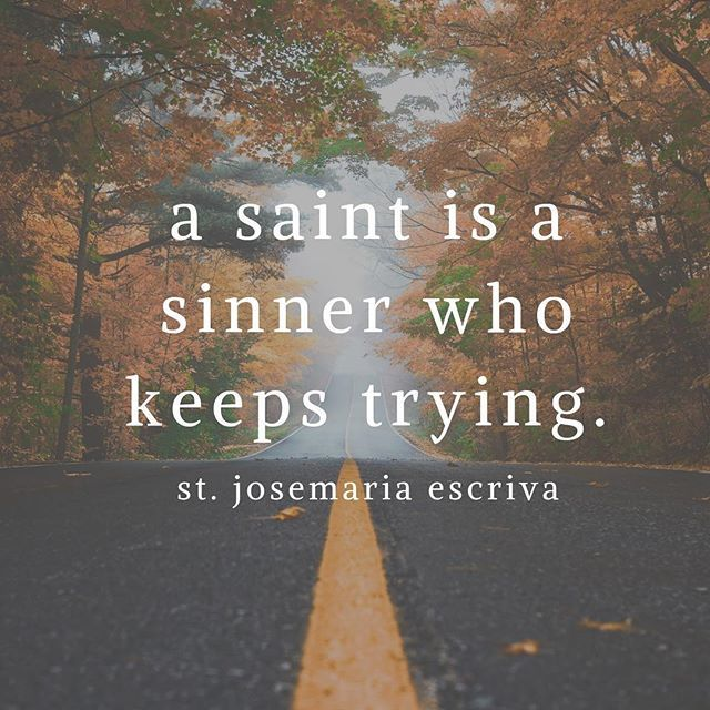 Franciscan Media On Twitter Everyone Is Called To Be A Saint Keep Trying Sainthood Saint Https T Co Laifjpgk9n