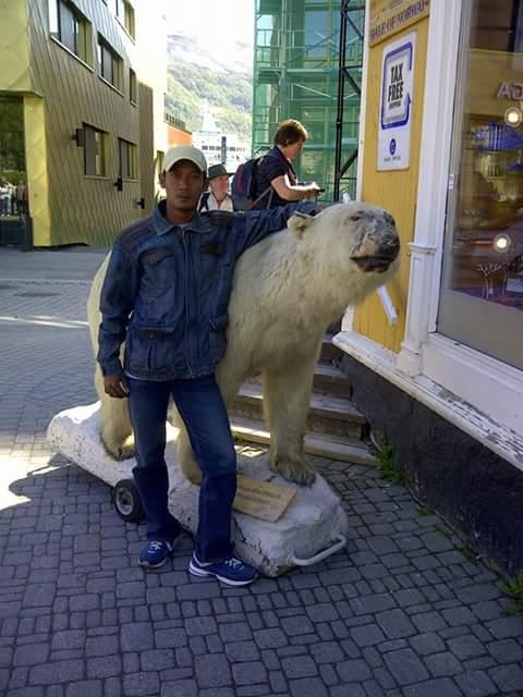 Beruang jinak....