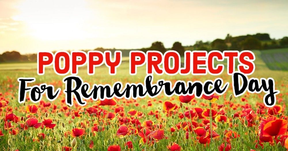 RT @Letsknitmag: Take a look at these wonderful Poppy Projects for Remembrance Day. ❤️❤️❤️  https://t.co/NTumiv0o1S https://t.co/83cc00nM75