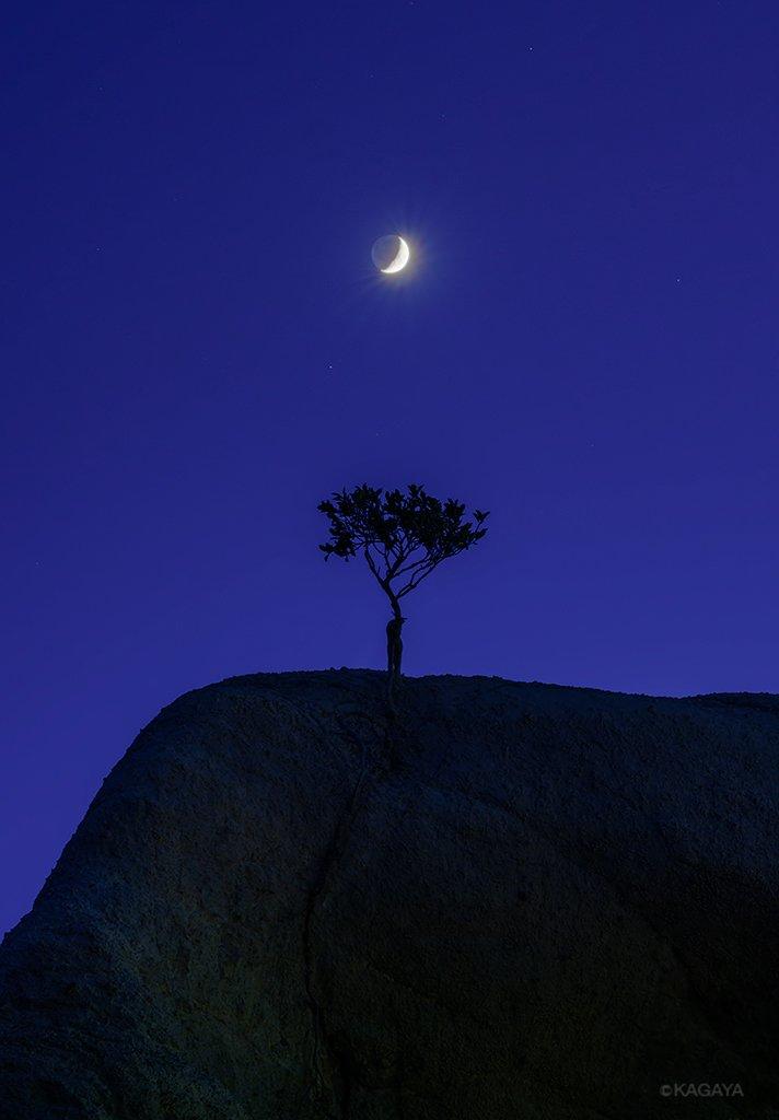 薄明の青の中。見上げれば、静かに見守り照らす月。(以前、能登半島にて撮影)今日もお疲れさまでした。明日もおだやかな1日になりますように。
