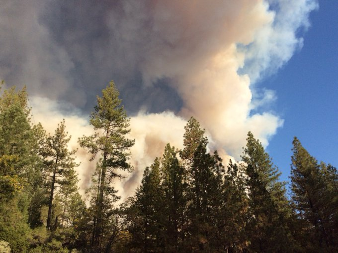 #Campfire [Update], Fire is at 1000 acres. Dozens of resources being called in from throughout the State. Photo