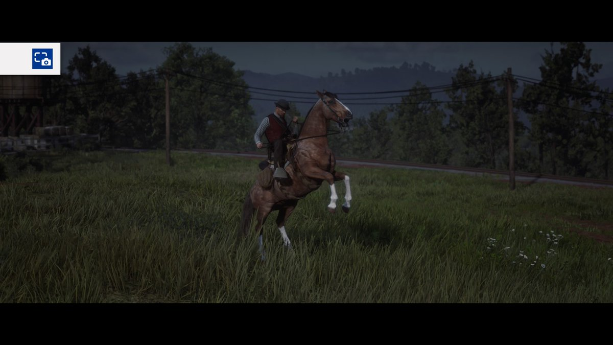 Freaking love my horse She&#39;s soo purdy, Show me your  fav stead in #reddeadredemption2 #zhazims #PS4share<br>http://pic.twitter.com/26L9Q9Vwra