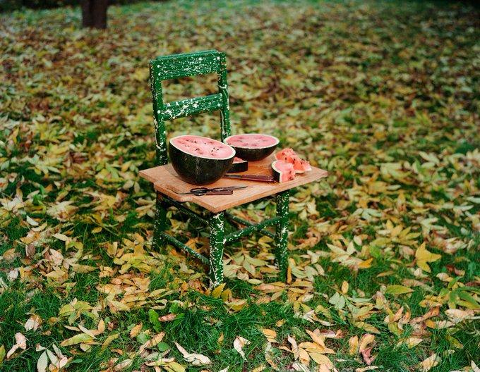 Сентябрь разбрызгал золото по кронам, листва пахнет терпким вином.  DrgQSEtX0AE8gWl