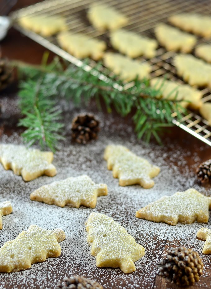✨PINE NEEDLE SHORTBREAD COOKIES✨ A twist on an old favorite and so festive! 🎄 RECIPE 👉https://t.co/ZdxG2324tf https://t.co/Nue8Q2YFRj