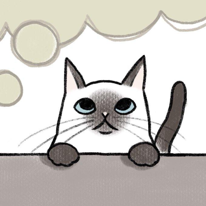 シャム猫のtwitterイラスト検索結果古い順