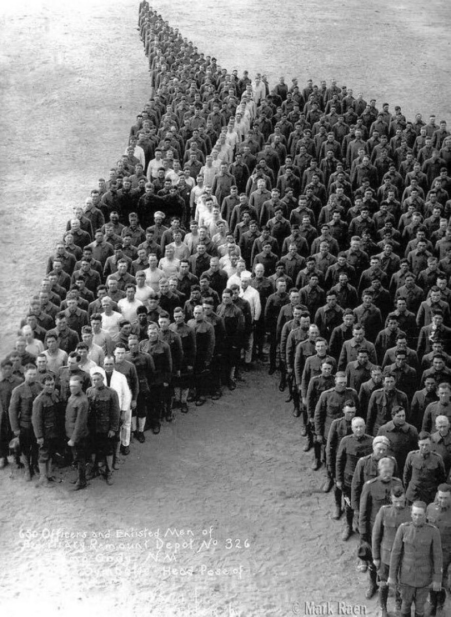 RT @JonnyGeller: A moving tribute to the 8 million horses killed in WW1. #RemembranceDay2018 https://t.co/PsX5K30GFY