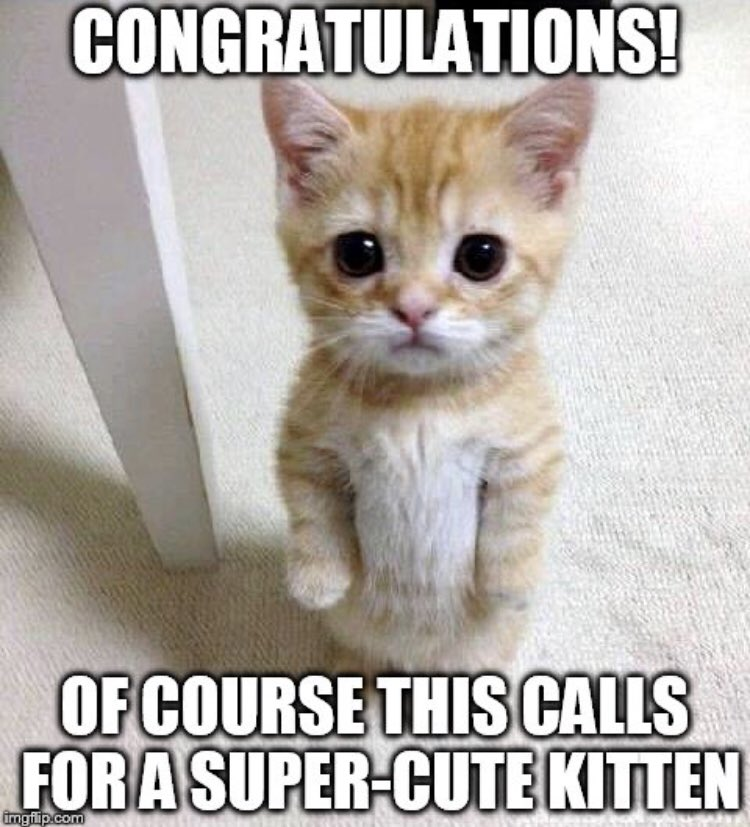 Joanne Manaster On Twitter Congratulations To My Daughter Muddymanda Who Passed Her Phd Qualifying Exam At Uw Today Proudmom Who made the congratulations meme funniest, most creative, most impactful and best overall images. phd qualifying exam at uw