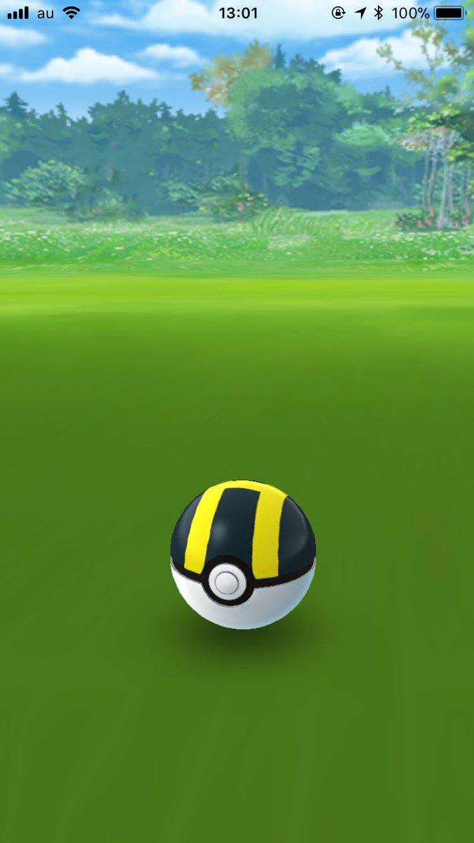 ヒノアラシの入ったハイパーボールが40分くらい微動だにしないから多分ボールの中で息を引き取ったんだと思う。