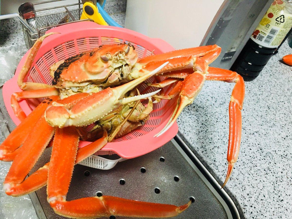 SOUP&BOIL 'MATSUBA'Crab  !Dandyism https://t.co/DJdxiM7rUG