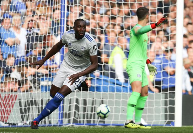 The Cardiff City player ratings as Sol Bamba produces late heroics to sinkBrighton Photo