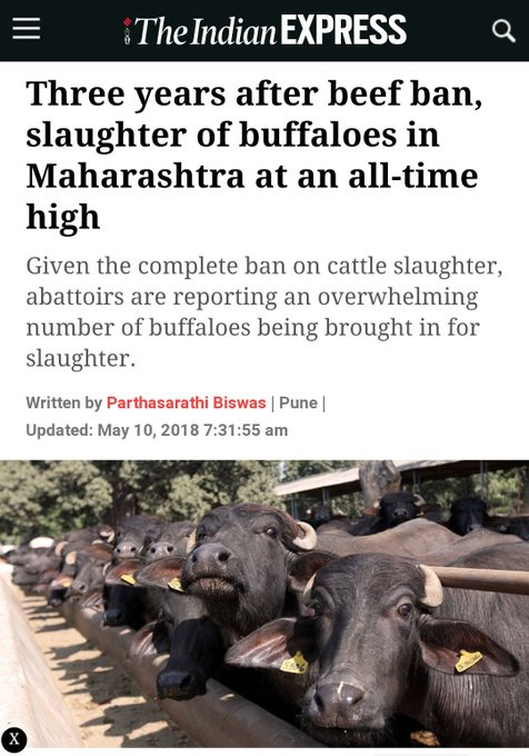 Just one question to @narendramodi where in hindu shastra is it written that you cannot kill a cow but can butcher as many Buffaloes as you like ? In india every Buffalo prays she should have been born a cow.#BJPkaJumlaPatra #BJP_भगाओ_देश_बचाओ Photo