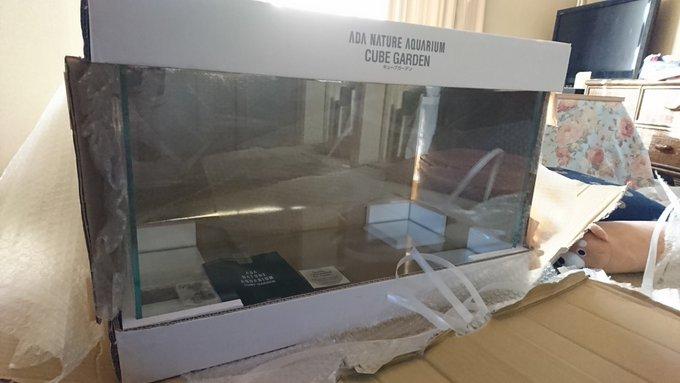 お荷物が、届きました〜なう(2018/11/11 09:13:16) ゲゲゲの鬼太郎どころではない。❤*.(๓´͈ ˘ `͈๓).*❤ 写真