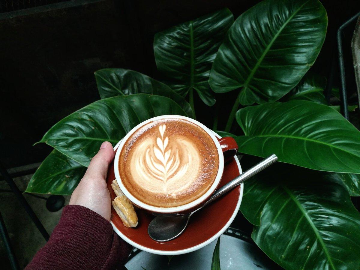 Let&#39;s get some coffee. #thunderbirdhostel #thailand #reviewchiangmai #chiangmai #coffeechiangmai #coffee<br>http://pic.twitter.com/io9gkKfmri