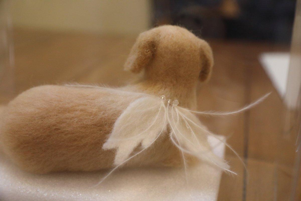 ハナが亡くなる前に、ブラッシングして集めた沢山の毛があったのですが、友達が半年かけて、その毛と羊毛フェルトで、人形を作ってくれました。込み上げてくるものがあります。