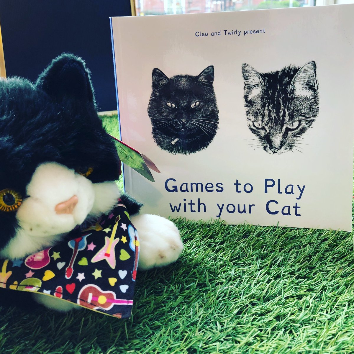 e-book Cleo & Twirly Present Games for Happy Cats