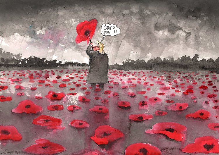 One of the most searing cartoons of the Trump presidency so far - by ⁦@roweafr⁩ #Armistice100 #Armistice