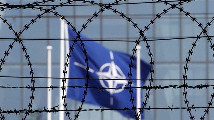 «Никто из здравомыслящих стран не хочет иметь в партнёрах территорию, которая инфицирована вирусом человеконенавистничества». Эксперты оценили заявление о «срыве» Россией вступления Украины в НАТО Фото