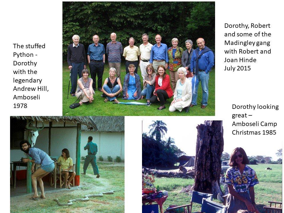 RIP Dorothy Cheney, ethologist extraordinaire!