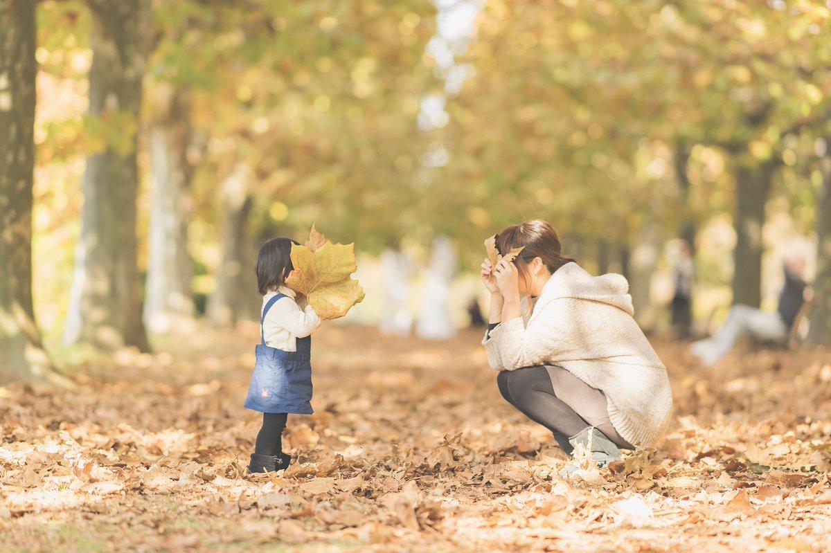娘が一歳の秋から撮り始めたこの場所。三年分の想い出をまとめてみました☺️
