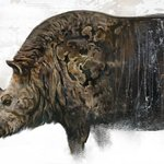 Image for the Tweet beginning: This gorgeous woolly rhino is