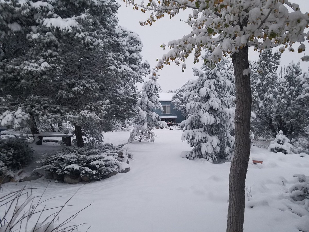 First snow of the season in Edgewood... 📸: Doris Donges @KOB4 #nmwx